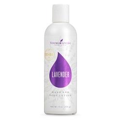 Lavender Hand & Body Lotion – 236 ml